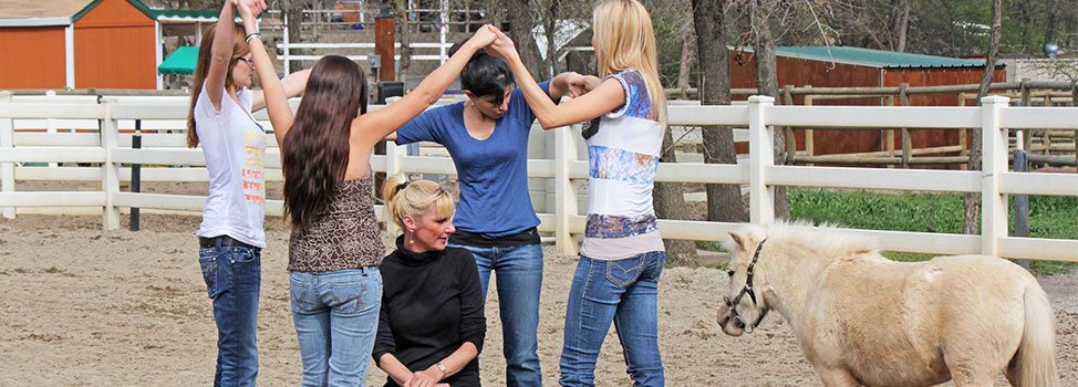 Equine-Ranch